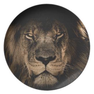 Prato Grande leão