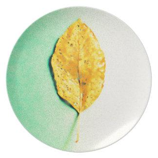 Prato Hortelã dourada por JP Choate