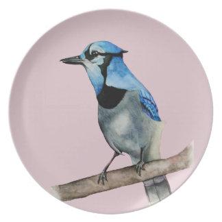 Prato Jay azul na pintura da aguarela do ramo