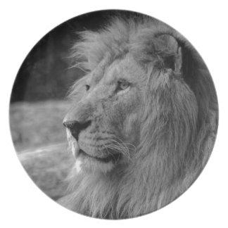 Prato Leão preto & branco - animal selvagem