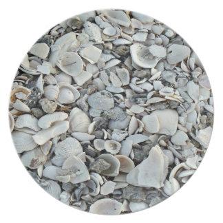 Prato Lotes e lotes dos Seashells