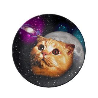 Prato lua do gato, gato e lua, catmoon, gato da lua