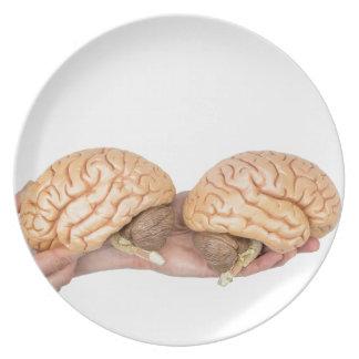 Prato Mãos que guardaram o cérebro humano modelo no