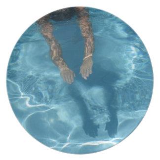 Prato Mergulho-Na placa da melamina