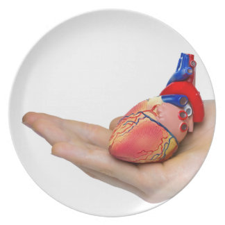Prato Modelo humano artificial do coração na mão