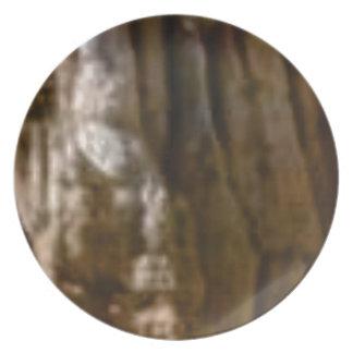 Prato músculos cinzelados na rocha