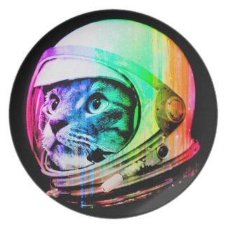 Prato os gatos coloridos - astronauta do gato - espaçam