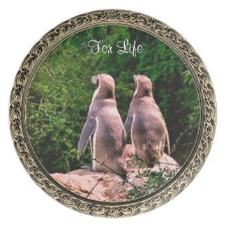 Prato Para a placa de coleção do pinguim da vida