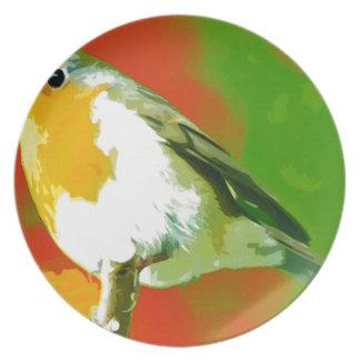 Prato Pássaro do pisco de peito vermelho