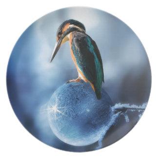 Prato Pássaro do zumbido no tiro congelado do macro da