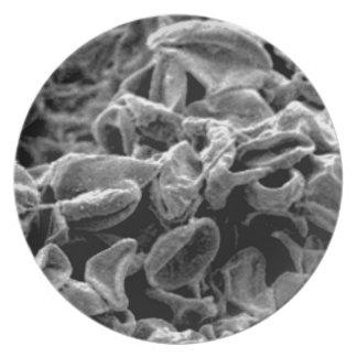 Prato pilhas ou bactérias pretas