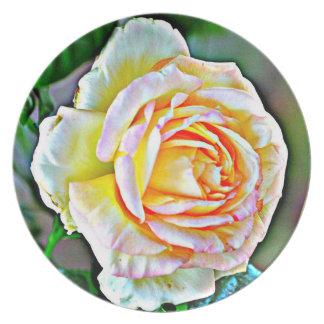 Prato Placa cor-de-rosa da melamina da beleza