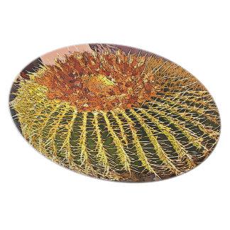 Prato Placa da melamina - cacto de tambor dos desenhos
