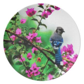 Prato Placa da melamina de Jay azul do Bougainvillea