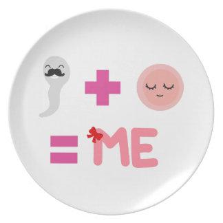 Prato Placa da melamina do processo de nascimento