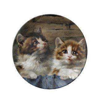 Prato Placa decorativa da porcelana dos gatinhos
