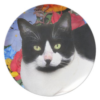 "Prato Placa do gato de ""Sidney"""
