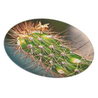 Prato Placa espinhoso da melamina do cacto