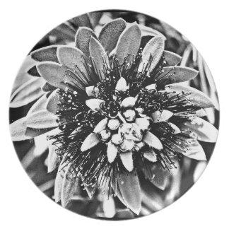 """Prato Placa """"flor branca da melamina do cacto em B&W """""""