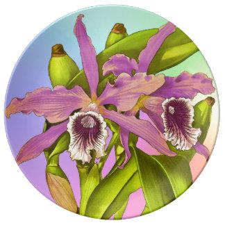 Prato Pop da orquídea