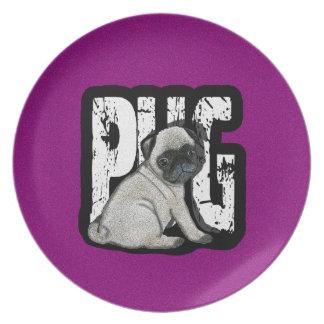 Prato Pug