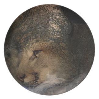 Prato Puma selvagem do leão de montanha da silhueta da