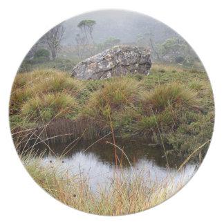 Prato Reflexões enevoadas da manhã, Tasmânia, Austrália