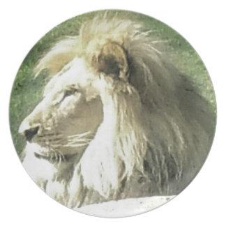 Prato Rei de animais