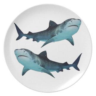 Prato Reunião do tubarão
