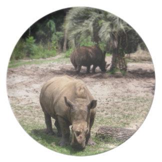 Prato Rhinos na placa do safari