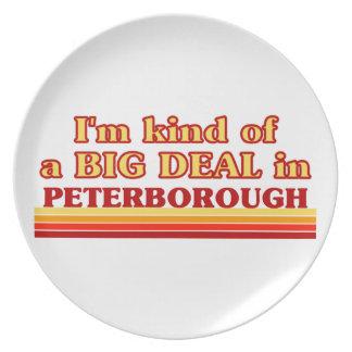 Prato Tipo de I´m de uma grande coisa em Peterborough