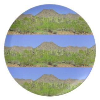 Prato Tontos na placa da melamina de Orion