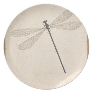 Prato Uma libélula, por Nicolaas Struyk, cedo 18o C.