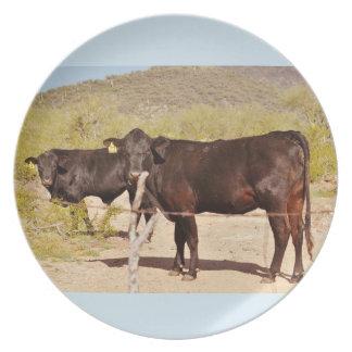 Prato Vacas de Brown na placa da melamina do cromo