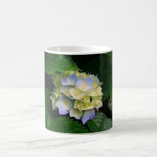 Prazer azul do Hydrangea 11 onças. caneca