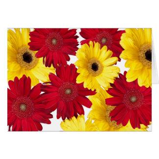 Prazer vermelho e amarelo da margarida de Gerber Cartão Comemorativo