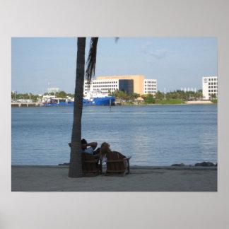 Preguiçoso em Miami Poster