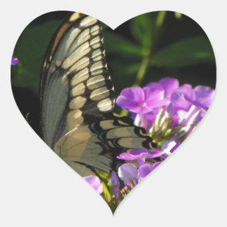 Presente da foto da borboleta adesivo coração