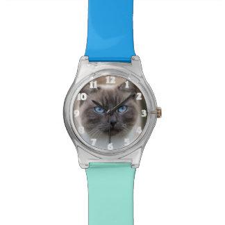 Presente engraçado do relógio da foto do gato