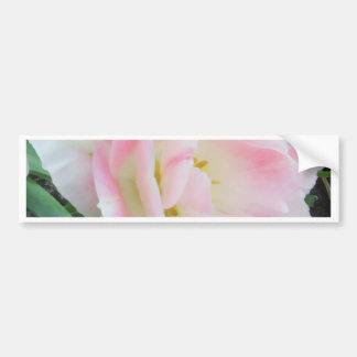 Presentes cor-de-rosa brancos da flor feminino adesivo para carro