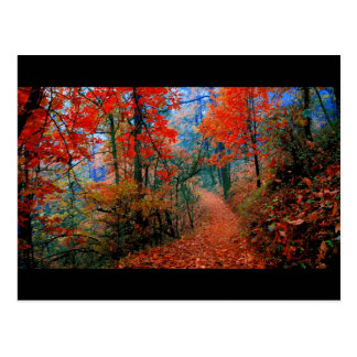 Presentes pintados da aguarela da chama do outono cartao postal