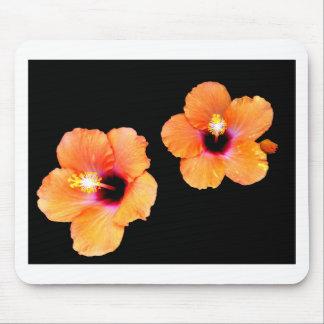 Preto alaranjado BG do hibiscus os presentes de Za Mouse Pads