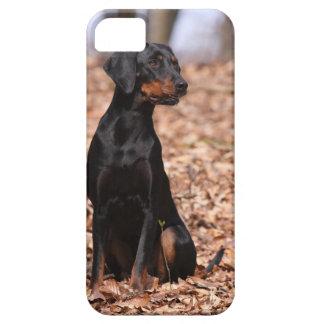 Preto austríaco e filhote de cachorro do cão de capa para iPhone 5