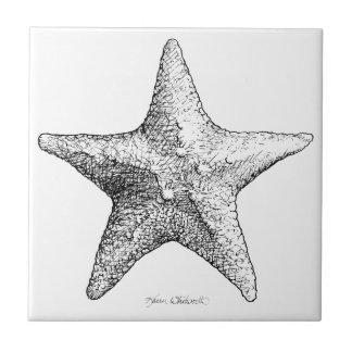 Preto & branco da arte da praia do oceano do