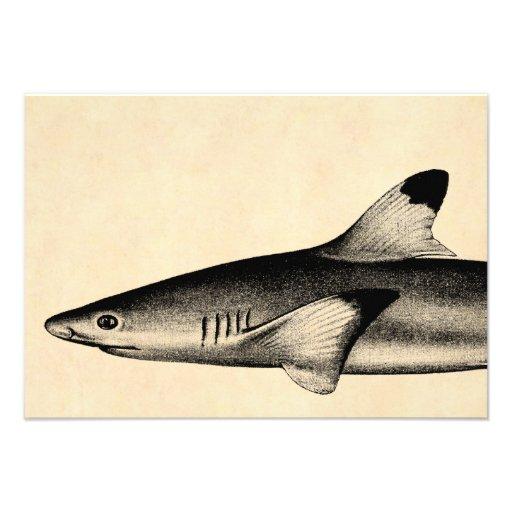 Preto da ilustração do tubarão do recife do vintag convite personalizado