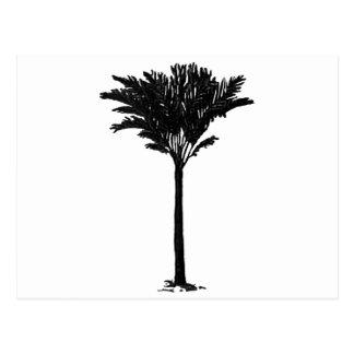 Preto da palmeira 2 os presentes de Zazzle do Cartoes Postais
