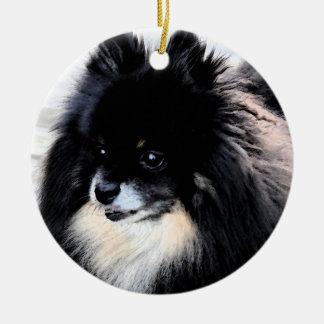 Preto & ornamento de Tan Pomeranian