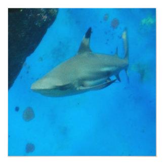 Preto pequeno tubarão derrubado convites personalizado