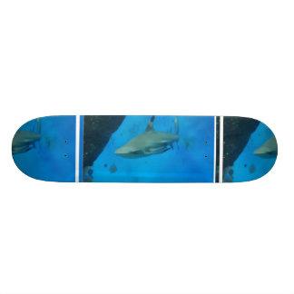 Preto pequeno tubarão derrubado skates personalizados