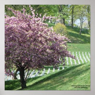 Primavera outra vez no cemitério nacional de Arlin Pôster